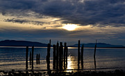 Puget Sound Photographs Prints - Locust Beach Print by Blanca Braun