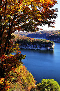 Man-made Lake Framed Prints - Long Point Summersville Lake Framed Print by Thomas R Fletcher