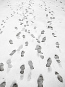 Stephen Rees - Lots of footprints in...