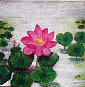 Lilly Paintings - Lotus by Sheela Padmanabhan