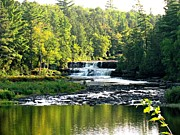 Michigan State Originals - Lower Tahquamenon Falls by Angela LaRue