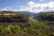 Mountain Posters - Lower Waimea Canyon Poster by Brian Harig