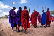 Apparel Posters - Maasai men in their ritual dance in their village in Tanzania Poster by Michal Bednarek