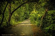 LeeAnn McLaneGoetz McLaneGoetzStudioLLCcom - Macomb Orchard Trail