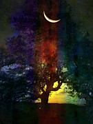 Dreamscape Metal Prints - Magic Tree Metal Print by Robert Ball