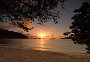 St Photos - Maho Bay Sunset by Stephen  Vecchiotti