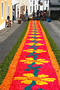 Gaspar Avila - Making flower carpets