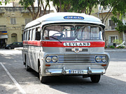 Leyland Framed Prints - Maltese Bus Framed Print by Sara  Meijer