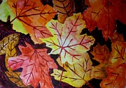 Mats Eriksson - Maple leaves
