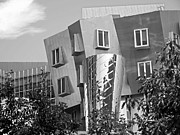 Gehry Framed Prints - Massachusetts Institute of Technology Stata Center Framed Print by University Icons