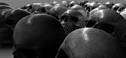 Massacre Of Skulls Print by Allan Swart