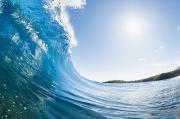 Maui Wave Print by Quincy Dein