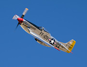 Steve Rowland - Merlins Magic- P51