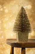 Wooden Chair Prints - Miniature Christmas Tree Print by Christopher and Amanda Elwell