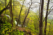 Rock Spring Trail Prints - Misty Mountain Print by Debra and Dave Vanderlaan
