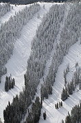 Sawatch Range Photos - Monarch Ski, Monarch Pass by John Wark