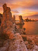 Mono Lake Framed Prints - Mono Blaze Framed Print by Peter Coskun