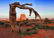 States Pyrography Posters - Monument Valley Landscape Poster by Katrina Brown