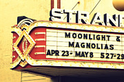 Marquise Posters - Moonlight and Magnolias Poster by Valerie Reeves