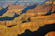 Morning Color And Shadow Play In Grand Canyon National Park Print by Shawn OBrien