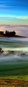 Sonoma County Digital Art Prints - Morning Fog over Two Rock Valley Diptych Print by Wernher Krutein