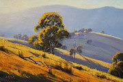 Landscape Paintings - Morning Sunlight  by Graham Gercken