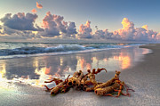 Beach Scenery Prints - Morning Surf Print by Debra and Dave Vanderlaan