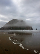 Photography - Morro Rock by Julie  Grace