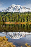 Jeff Goulden - Mount Rainier and...