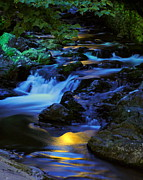 Moonlight Posters - Mountain Stream Poster by Robert Harmon