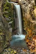 Adam Jewell - Mt Rainier Christine Falls