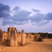 Western Australia Prints - Nambung National Park Print by Colin and Linda McKie