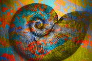 Colored Shell Prints - Nautilus Shell-no2 Print by Darla Wood