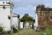 The Vault Prints - New Orleans Lafayette Cemetery Print by Christine Till