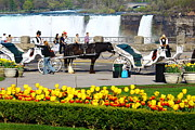Niagara Carriage Prints - Niagara Falls Carriage Ride Print by Rexford L Powell