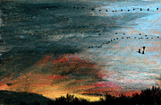 Waterfowl Pastels - Nightfall by R Kyllo