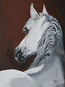 Arabian Horse Paintings - Norman by Janina  Suuronen