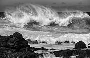 Jamie Pham - North Shore Crash