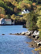 North-west Cove Print by Janet Ashworth