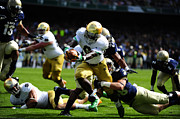 Cheers Photos - Notre Dame versus Navy by Mountain Dreams