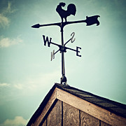 Weather Vane Prints - Nwse Print by Natasha Marco