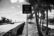 Mile Road Posters - Old And New Seven Mile Bridge In Marathon In The Florida Keys Poster by Joe Fox