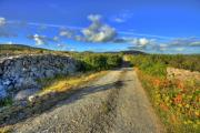 John Quinn - Old Burren Road