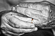Elderly Hands Posters - Old hands with wedding band Poster by Elena Elisseeva