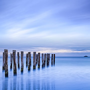 Seascape Prints - Old Jetty Pilings Dunedin New Zealand Print by Colin and Linda McKie