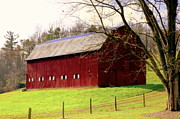 Red Barns Photo Prints - Old Red Print by Karen Wiles