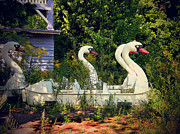 Art Photography Prints - Old swan boats in Plaenterwald Berlin Print by Art Photography