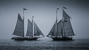 Schooners Art - Oldest Schooners by Fred LeBlanc