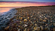 Cape Cod Metal Prints - On The Rocks Metal Print by Bill  Wakeley