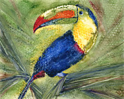 Toucan Paintings - One Cant But Toucan by Marsha Elliott